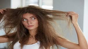 وصفات لتنعيم الشعر الجاف