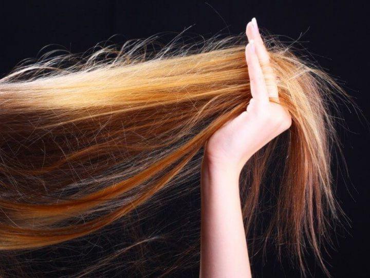 شامبو لعلاج تقصف الشعر